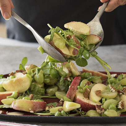 Apple and Celery Salad with Nuts