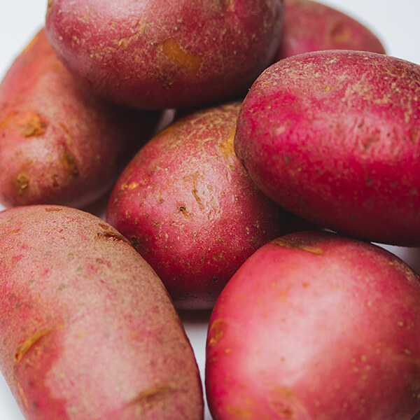 Red skinned oval shaped potatoes