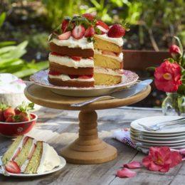 Vanilla_Cake_Main